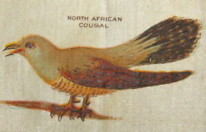 Vintage Tobacco Cigarette Silk N African Cougal Bird C1910 Use In Crazy Quilt