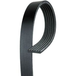 6k980 Ac Delco Serpentine Belt New For Chevy Olds Suburban F150 Truck F250 F350
