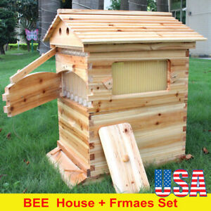 Automatic Wooden Beehive Box Honey Bee Hive Beekeeping House W 7 Pcs Bee Frames