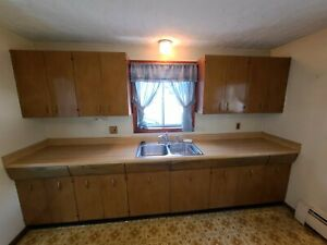1956 Avco Steel And Wood Kitchen Cabinets