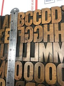 Wood Type 99 Pcs Of 1 11 16 Inch