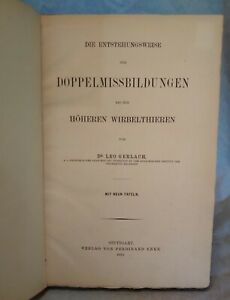 1882 German Language Zoology Textbook Owned By William Mcmichael Woodworth