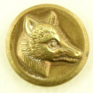 1840s 50s Fox Coyote Showing Its Teeth Sporting Button Rmdc Bm P8d