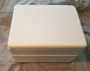 Styrofoam Insulated Shipping Cooler Cube Thermo Mailer 15 X 11 1 2 X 10 1 4