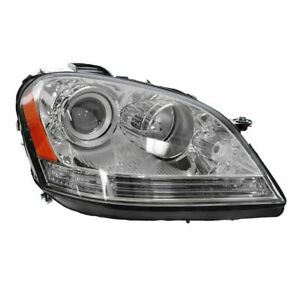 Halogen Headlight Headlamp Passenger Side Right Rh For Mercedes Ml Class