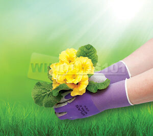 Atlas Showa 370 Nitrile Women s Gardening Gloves Equestrian Free Ship