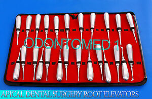 25 Pc Apical Dental Surgery Root Extraction Extracting Elevators