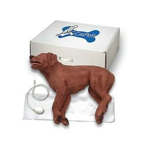 Brand New Simulaids Casper The Cpr Dog 5000