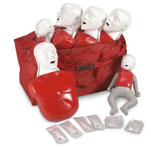 Life form Basic Buddy Convenience Pack Training Cpr Manikins Lf03732u