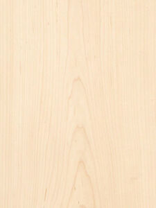 Maple White Wood Veneer Plain Sliced 10 Mil Paper Backer 2 X 8 24 X 96