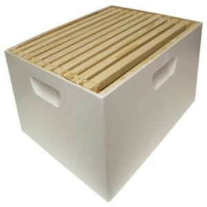 Harvest Lane Honey Wwbcd 101 Deep Brood Box With 10 Frames Foundations