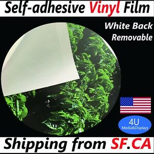 42 x100ft removable White Self adhesive Inkjet Printing Window Graphic Vinyl