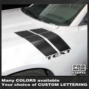 Dodge Charger 2011 2019 Fender Hash Side Accent Stripes Decals Choose Color