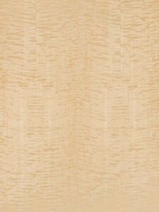 Exotic Curly Tiger Maple High Figured Wood Veneer Paper Back 2 X 4 24 X 48