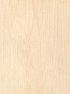 Birch White Wood Veneer Rotary Cut Paper Backer Backing 2 X 8 24 X 96
