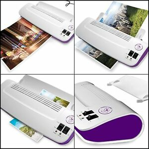 Purple Cows Hot And Cold 9 Laminator