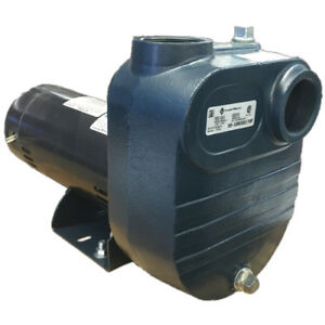Fps 2 Hp Utility Pump 230 Voltage 2 Npt Inlet 2 Npt