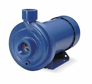 Goulds Water Technology Stainless Steel 1 Hp Centrifugal Pump 115 230vac