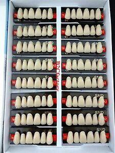 16pcs Dental False Denture A2 t10 Upper Anterior Acrylic Teeth Synthetic Resin
