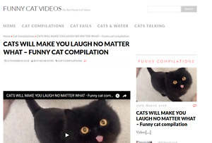 Automated Funny Cats Video Blog Website