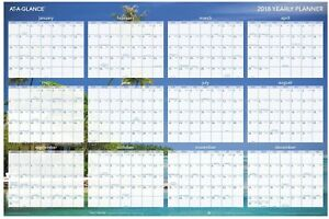 At a glance Wall Planner 24 X 36 Erasable Reversible Horizontal Tropical
