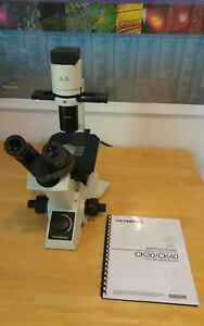 Olympus Ck30 Inverted Phase Contrast Microscope 10xpc 40xpc Tissue Culture Cells