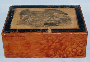 Antique Early American Faux Grain Painted American Eagle Document Cigar Box