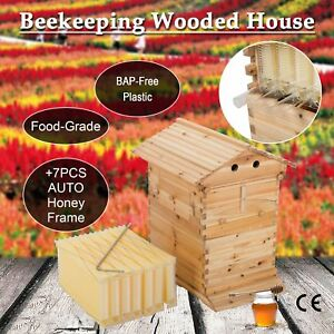 10 frame Hive Frame bee Hive Frame W Auto Honey Hives Edy