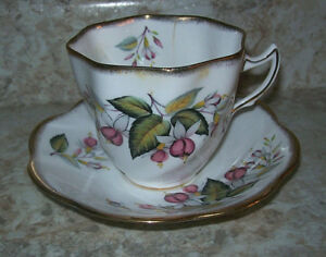 Vintage Fuchsia Flowers Bone China Cup Saucer Rosina Made In England