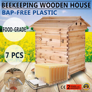7 Pcs Auto Bee Honey Hive Frames Beehive Beekeeping Wooden Brood House