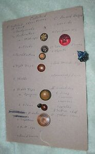 Nk 006 Ten Vintage Celluloid Sewing Buttons All Different