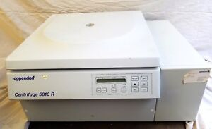 Eppendorf 5810r Benchtop Centrifuge 5810 R