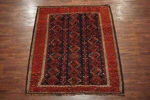 Persian 6x7 Antique Turkoman Bukhara Area Rug Hand Knotted Wool Carpet 6 X 7 6