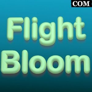 Flightbloom com Short Letter com Premium Brandable Domain For Sale Travel