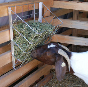 North Star Metal Hay Basket For Goats
