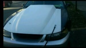 1999 2004 Ford Mustang Performance Hood 00 01 02 03