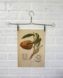 2 Vintage Rusty Primitive Wire Hangers With Clips Art Display Picture Hanger