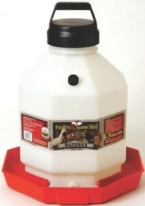 New Miller Pet Lodge Ppf5 5 Gallon Plastic Usa Poultry Chicken Waterer 0058073