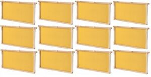 Summerhawk Ranch Frame Bees 9 5 8 Deep Frame And Foundation 12 pack
