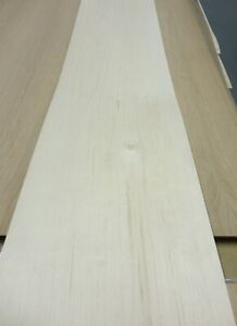 Maple Wood Veneer Sheet 7 X 100 Fleece Backer 1 40 Thickness A Grade Quality