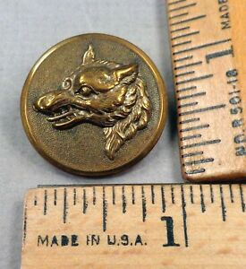 Dog Or Wolf Head Brass Sporting Hunt Club Button 4 1800s Tin Back