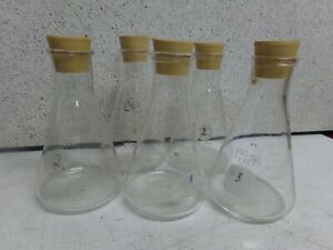 Pyrex 250ml Erlenmeyer Flask rimmed Mouth W 6 Rubber Stoppers lot Of 5