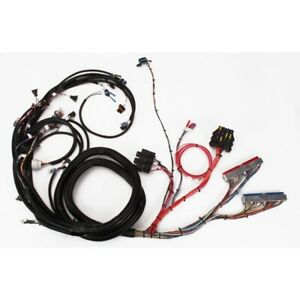 Speedway 1999 2002 Ls1 Engine Wiring Harness Extended