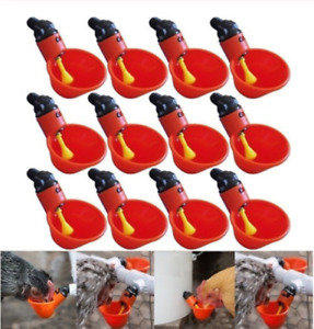 50pcs Poultry Water Drinking Cups Chicken Hen Plastic Automatic Drinker Us