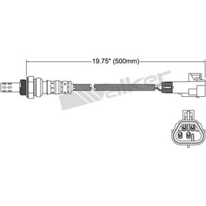 350 34489 Walker Products O2 Oxygen Sensor Downstream Upstream New For Chevy