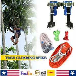 Tree pole Climbing Spike Safety Belt Straps Adjustable Lanyard Rope Carabiner
