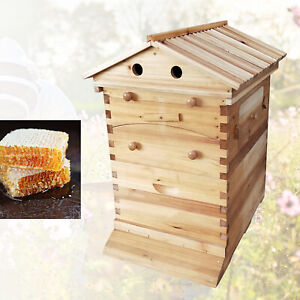 Wooden Bee Hive House Automatic Honey Frames Beekeeping Super Brood Box Set New