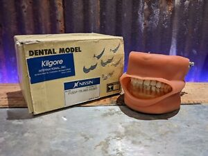 Nissin Dental Model Kilgore International P15dp