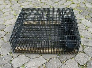 Quail Poultry Transport Crate Game Bird Solid Rubber Coated Wire