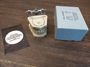 Columbia Dentoform Periodontal Typodont Soft Clear Gingiva W Calculus